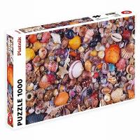 Puzzle 1000 pièces : Coquillages